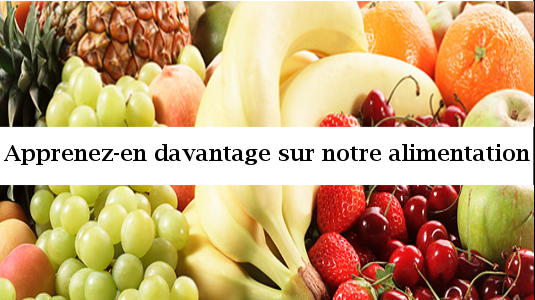 Aliment/Nutrition